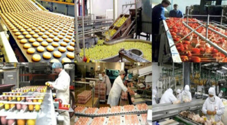 إستثمار الصناعة الغذائية بقيمة 241 مليار دج في 2018