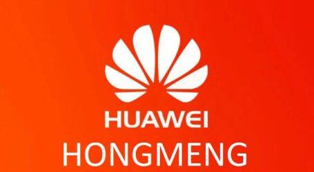 هنغ ـ منغ، نظام خدمة الهواتف الذكية الصينية هواوي يثير المتتبعين