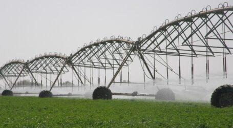 الارتكاز على الري التكميلي لرفع الإنتاج في  شعبة الحبوب