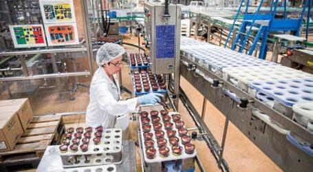 تشجيع الاستثمار في الصناعات التحويلية